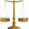 Thumbnail image for Hair Breakage 101: Protein and Moisture