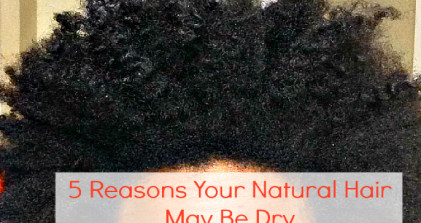 5 Reasons Your Natural Hair is Dry