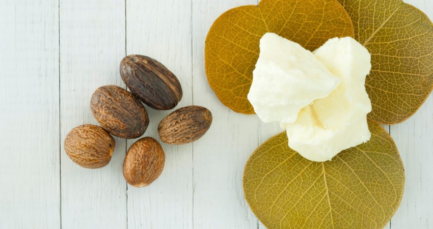 Shea Butter Benefits for Hair
